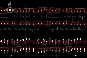 Bjork - Crystalline Notation